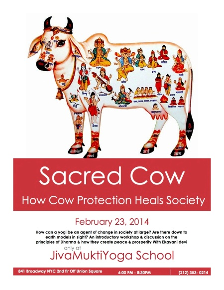How Cow protection Heals Society